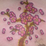 Cherry blossum branch tattoo