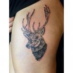 Mandala deer tattoo