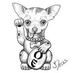 Chihuahua sketch